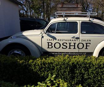 Foto van Boshof in Odoorn
