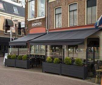Foto van Dionysos in Leeuwarden