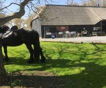 Foto van Het Koekoeksnest in Nieuwvliet