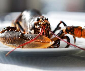 Foto van Restaurant Merwezicht in Gorinchem