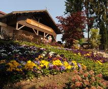 Foto van Chalet Klein Zwitserland in Driebergen-Rijsenburg