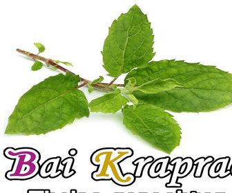 Foto van Bai Kraprao in Bussum