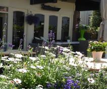 Foto van Brasserie Duinberk in Schoorl