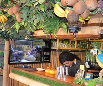 Foto van Frankie's Jungle Bistro in Neede