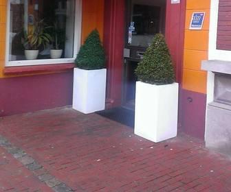 Foto van Amore Mio in Steenbergen nb