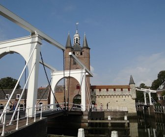 Kleintje 07 09 14 ride for the roses in zierikzee %288%29 preview