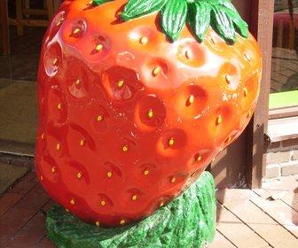Strawberrylounge