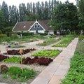 De eigen groente en kruiden tuin thumbnail