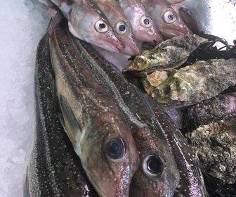 Vishandel Peeckels