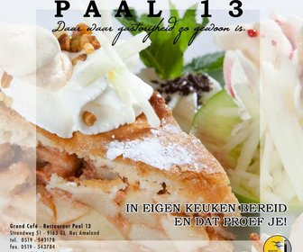 Paal 13