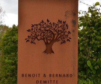 Benoit & Bernard Dewitte