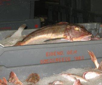 Restaurage De Zeemeeuw