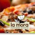 Lamora logo mail thumbnail