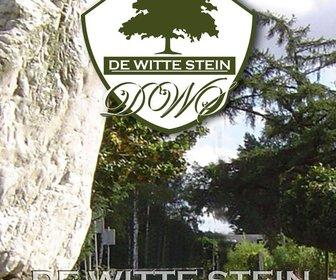 De Witte Stein