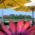 Foto0032 thumbnail