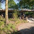 Foto van Brasserie de Berken in Gasselte
