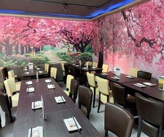 Sakura domburg sushi 5 min preview
