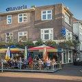 Foto van Calypso in Eindhoven